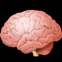 EEG-EMG